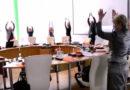 Видео: депутаты танцуют на заседании думы