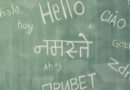 «В Латвии нужно оставить билингвальное обучение»