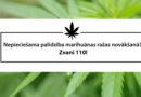 """Полиция предлагает """"помочь"""" собрать урожай марихуаны"""