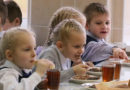 Государство будет участвовать в финансировании обедов в начальной школе