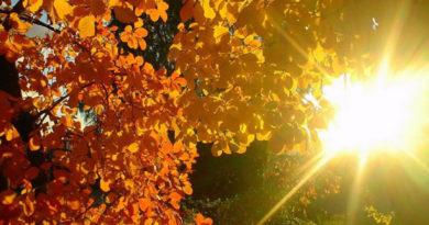 В воскресенье наступила астрономическая осень