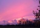 Лиепая в розовом цвете (фото, видео)