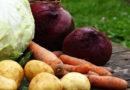 Опубликован список латвийских хозяйств, где можно самим собрать урожай