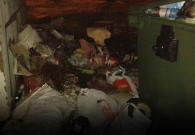 Оправдана ли экономия на вывозе мусора? (+опрос)