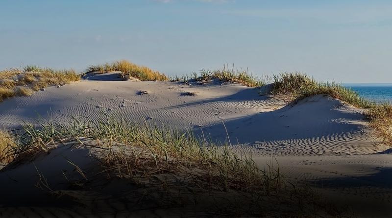 Последний сигнал с телефона пропавшего мужчины зафиксирован в дюнах