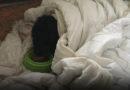 На улице Робежу найдена собака