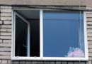 В Лиепае погибли сотни птичек: жителей призывают клеить трафареты на окна