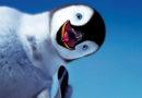 У латвийских полярников в Антарктиде пингвины воруют оборудование