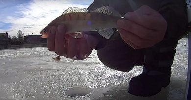 Рыбалка в Лиепае
