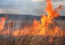 Из-за обширного пожара в Курземе эвакуирован населенный пункт