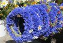 Праздник Лиго: как выбрать травы для букетов и венков