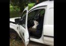 Лиепая: пьяный водитель в парке врезался в дерево