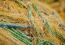 На Перконском канале поймали браконьеров-рецидивистов