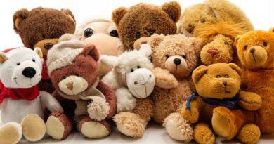 29 декабря пройдет благотворительная игра «Летят медведи!»