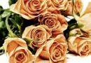 СМИ: в Латвии торгуют розами отравленными пестицидами
