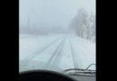 Курземе засыпало снегом (фото, видео)