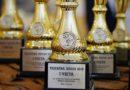 Лиепайские гимнастки приняли участие в «Кубке тигренка 2019»