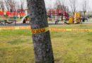 Полиция напоминает: за посещение детских площадок грозит штраф!