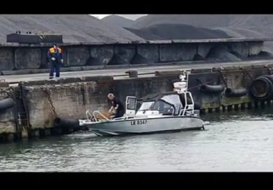 В Лиепае из канала спасли маленькую косулю (видео)