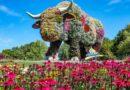 Вентспилс отмечает 730-летие: праздничные мероприятия пройдут с 31 июля по 2 августа