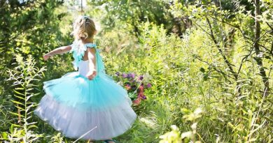 Инспекция по защите прав детей оценит конкурс красоты Mini Miss Latvija