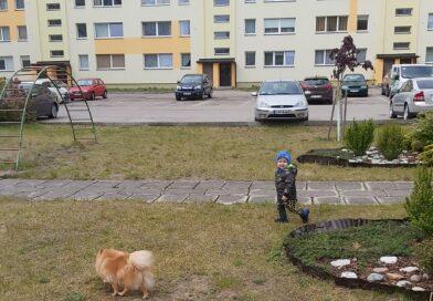 Лиепайчанка: в нашем дворе бесцеремонно снесли всё, что радовало детей