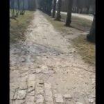 Военный городок: тротуары возле парка будто после бомбежки (видео)