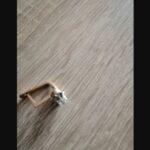 Лиепая: на пляже найдена золотая серьга