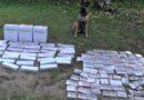 Служебный пес Марко выявил более 27 тысяч нелегальных сигарет