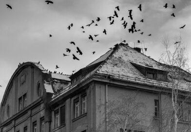 Новые правила Кабмина: в Лиепае без жилищного пособия останутся около 70 % жителей