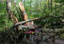 Трагическое ДТП в Лиепае: известна фамилия пьяного водителя и виновника гибели ребенка