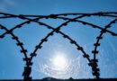 Заключен новый договор о строительстве забора на границе с Беларусью